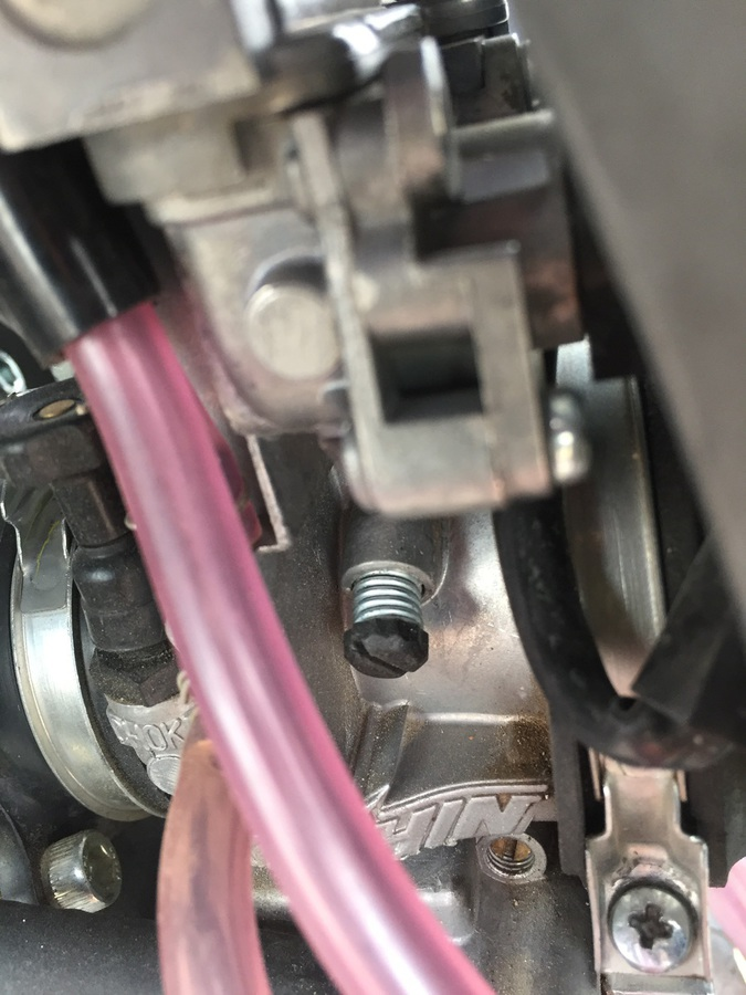 Carb Idle screw.JPG