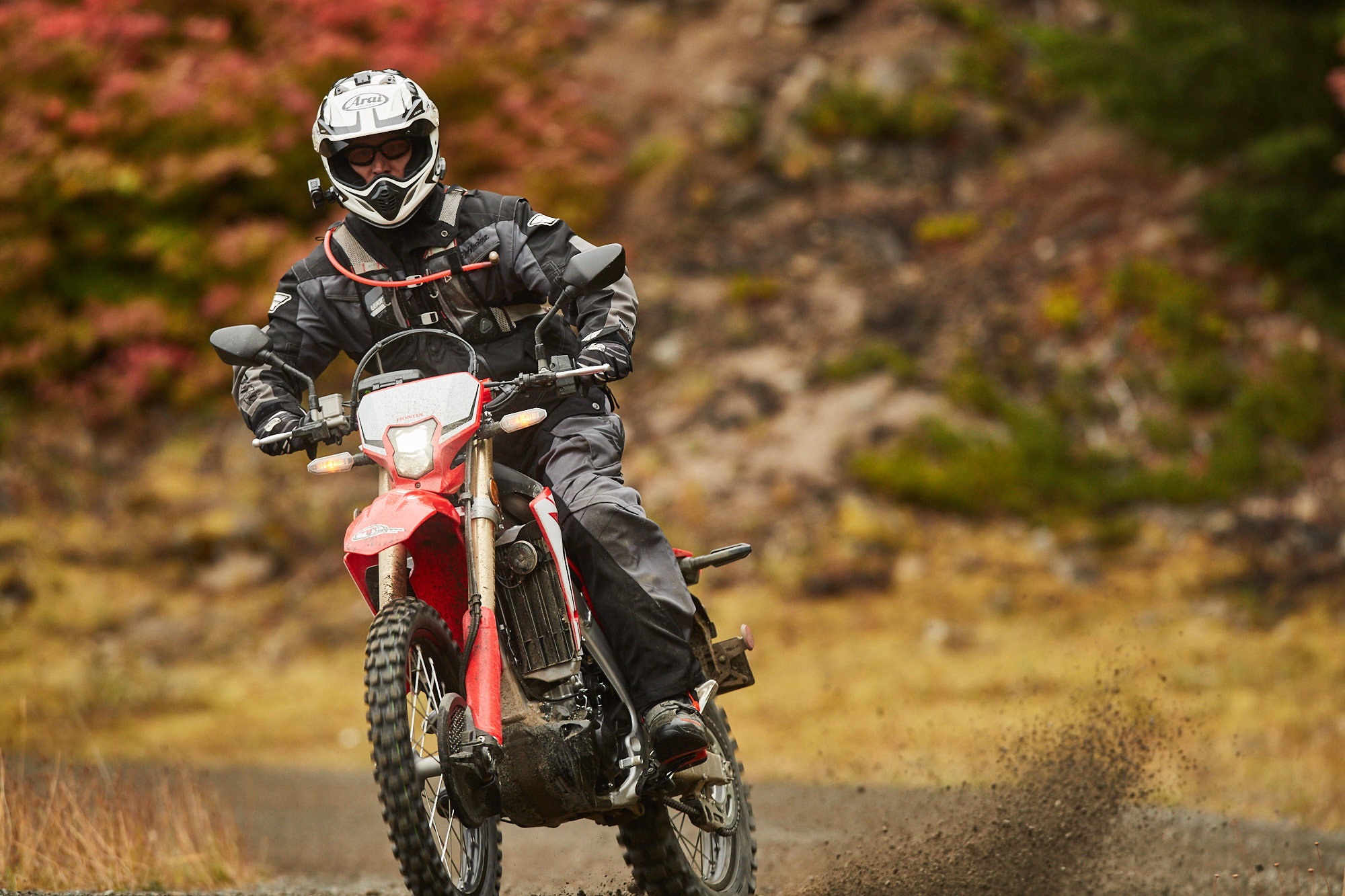 Full Review of the 2019 Honda CRF450L Dual Sport