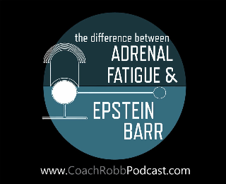 Coach Robb Podcast #26 - The Difference Between Epstein Barr, Adrenal Fatigue and Chronic Fatigue Syndrome