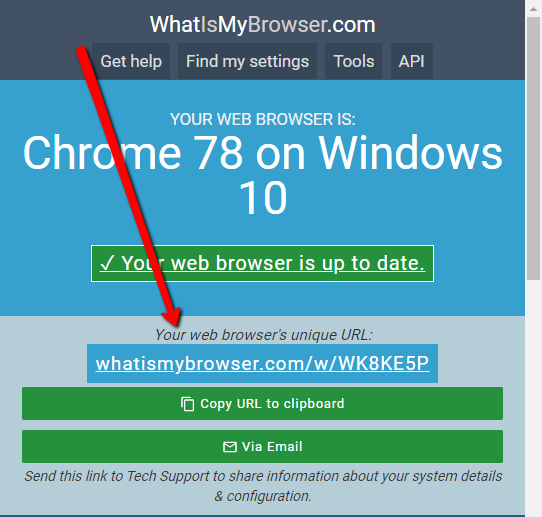 WhatIsMyBrowser.png